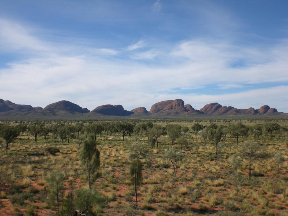 Rainy & green - Uluṟu-Kata Tjuṯa National Park!
