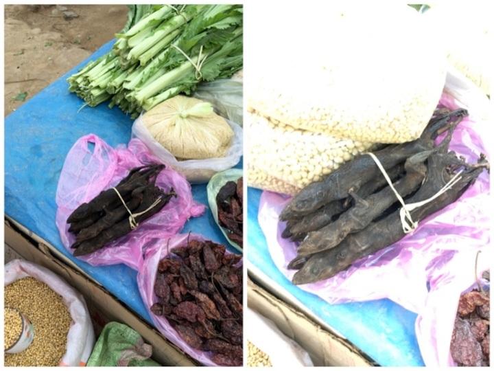 Smoked geckos in Mon market!