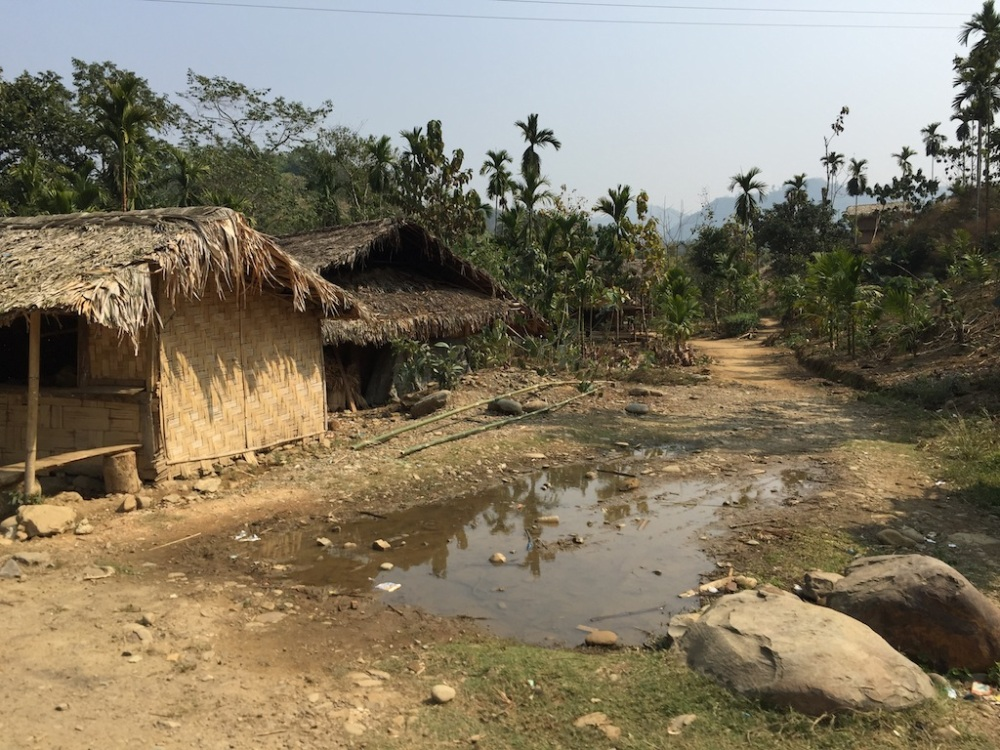 Naga Village near the Assam border