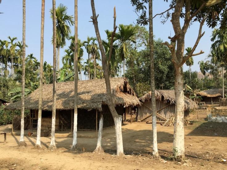 Naga Village near the Assam border